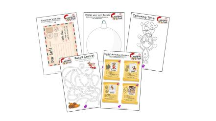 picture relating to Christmas Printable Activities identified as Xmas Printable Things to do and Worksheets No cost