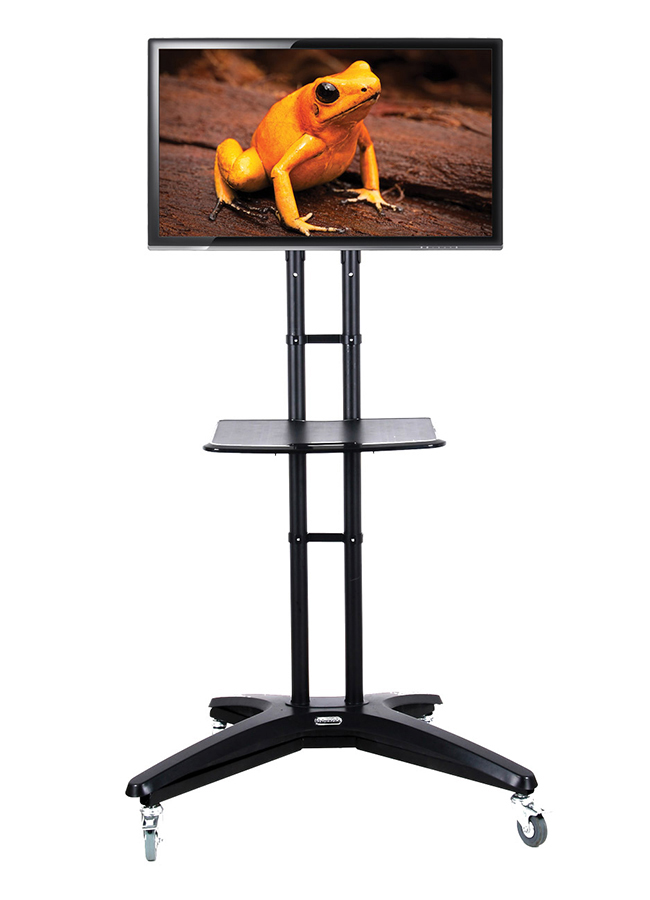 Portable School TV Stand
